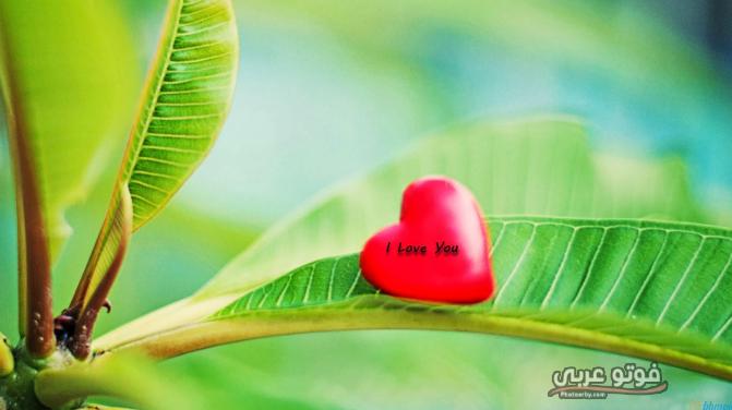 اجمل صور بوستات حب جامدة 2019 بوستات حب رومانسية 2019