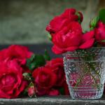 اجمل صور ورد جميل 2019 أحلي صور ورد وزهور رومانسية photo flower 2019