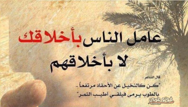فوتو عربي صور مكتوب عليها حكم 2019 وأقوال رائعة