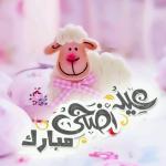 صور مسجات تهاني عيد الأضحى 2019 كروت عيد الاضحي المبارك
