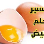 تفسير رؤية البيض في الحلم للعلماء