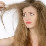 علاج الشعر التالف بنصائح طبية مهمة