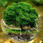 اجمل صور عن البيئة 2020