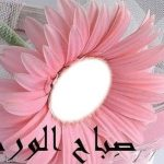 مسجات صباح الخير للاصحاب