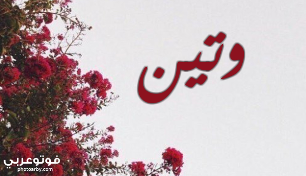 معني اسم وتين صفات شخصية Weten فوتو عربي