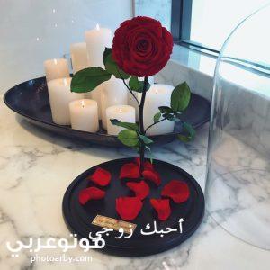 صور عيد الحب قلوب 2021