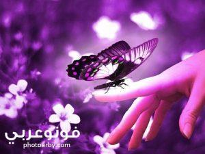 اجمل صور خلفيات فيس بوك