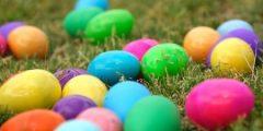 صور بيض جميع الالوان 2021