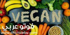 أفضل نظام غذائي نباتي للاطفال وأهم التحذيرات