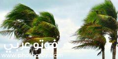 تفسير حلم الرياح في المنام