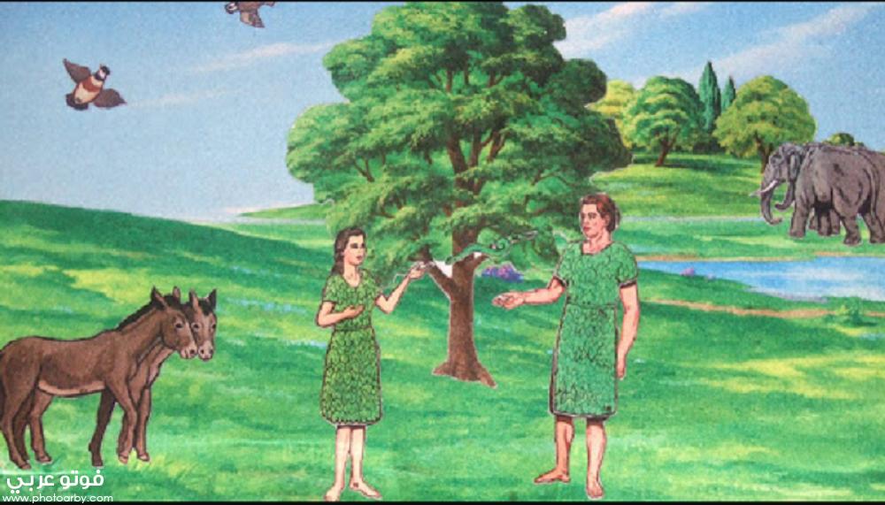 قصة أدم وحواء